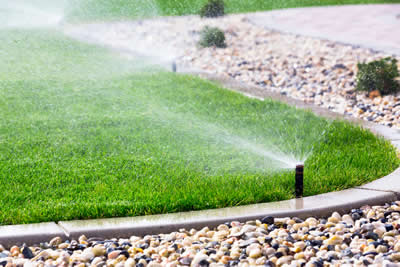 Irrigation wellington